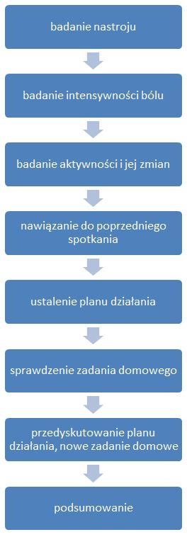 Schemat struktury sesji terapeutycznej