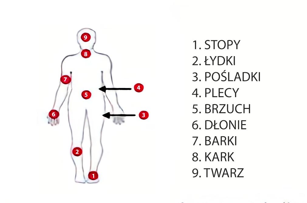 Schemat przedstawiający kolejność spinania i rozluźniania mięśni